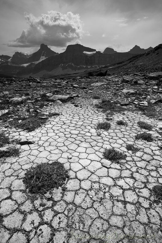 Cobblestone by Nature